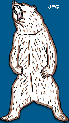 Bild eines Bärens als JPG