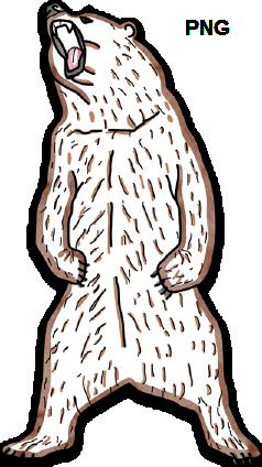 Bild eines Bärens als PNG