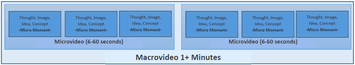 figure representing elements of a microvideo