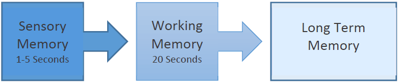 image showing process of information moving from sensory memory to working memory to long term memory