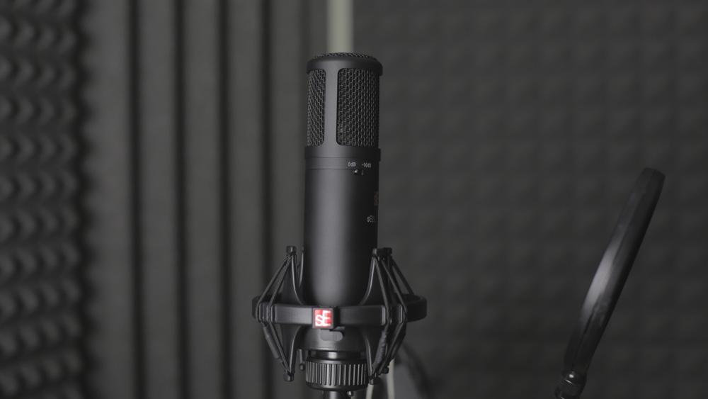 SE Electronics sE2200a II - Welche Mikrofone eignen sich für Videoaufnahmen?