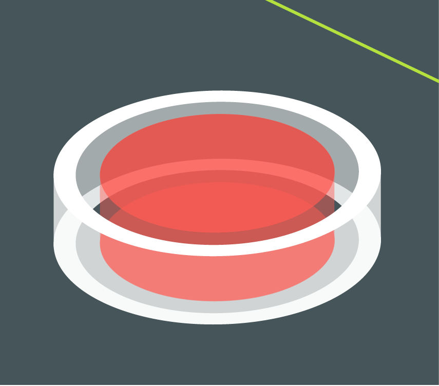 Camtasia record button icon