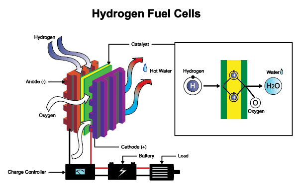 Diagram of a hydrogen fuel cell in a quality online course