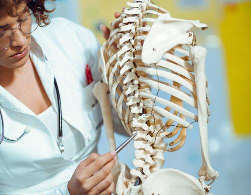 Health sciences instructor explaining a medical skeletal model in a video lesson