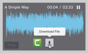 screenshot of a song download from TechSmith Assets