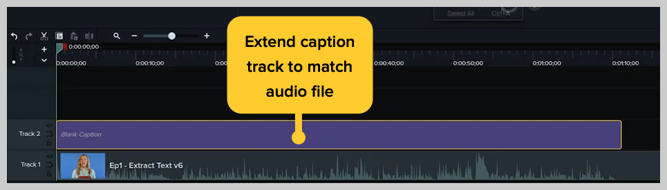 screenshot of how to add a subtitle or caption to a video in camtasia step 7