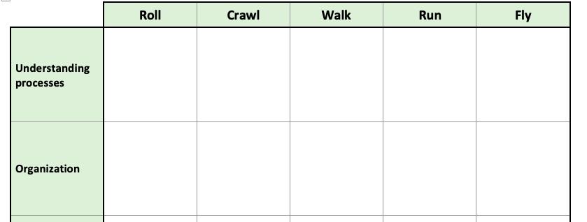 Maturity Matrix example