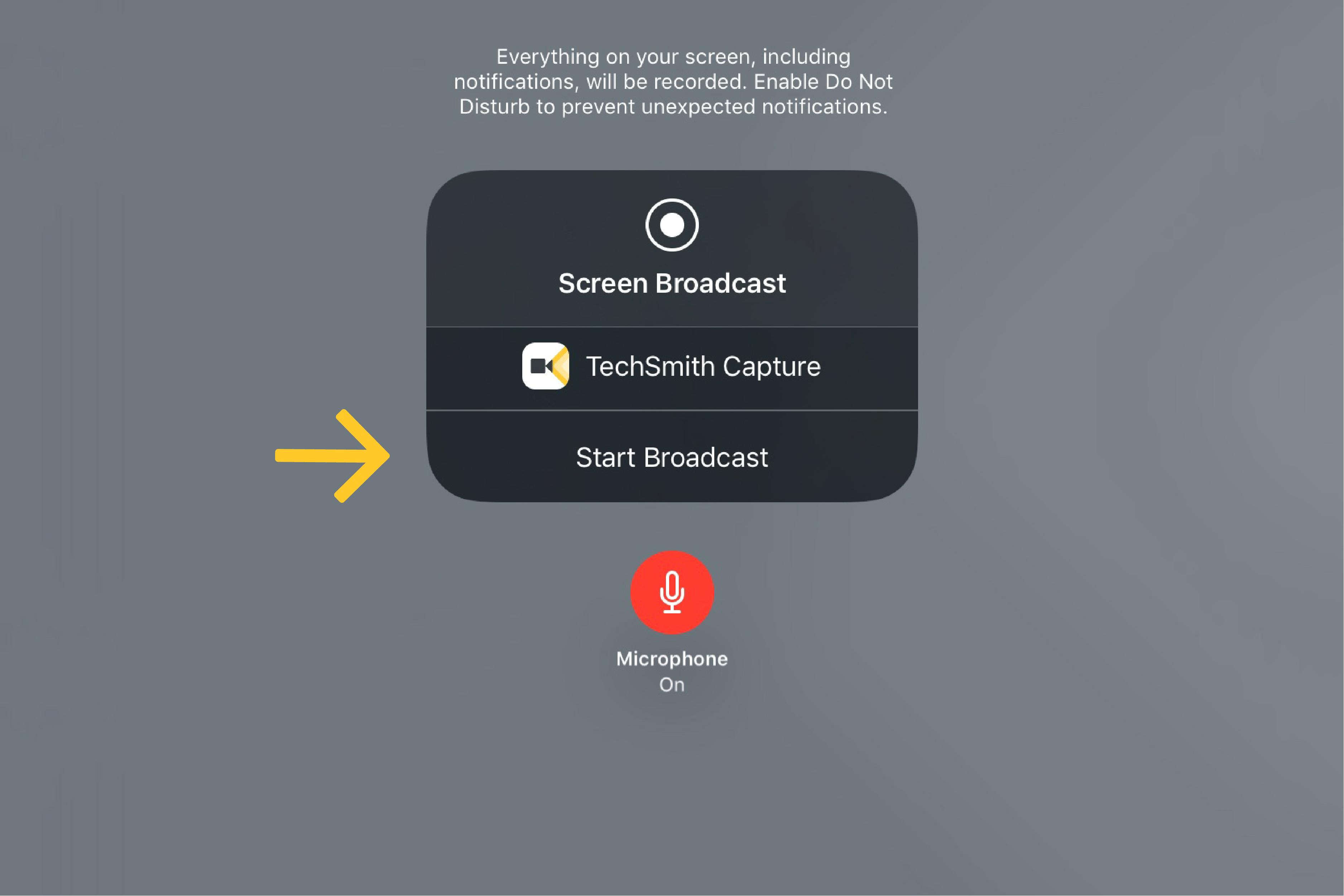 TechSmith Capture Screen Broadcast button