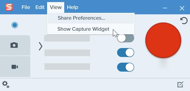 Snagit capture window