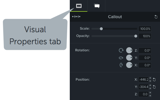 The visual properties tab within Camtasia, used to adjust the scale, opacity, rotation, and position of an object