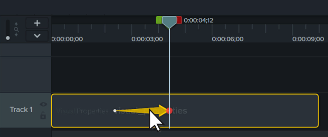 the animation arrow selected on the Camtasia timeline