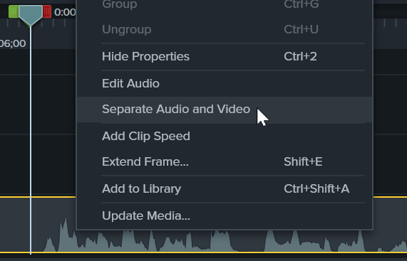 Separate audio and video option