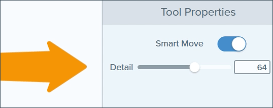 Snagit smart move with arrow pointing towards the Detail slider