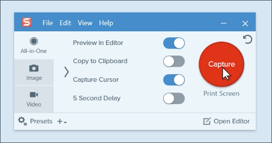 The Snagit capture window which includes the all-in-one tab, image tab, and video tab