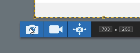 The capture toolbar with the cursor hovering over the image capture button