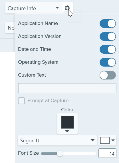 Capture Info settings
