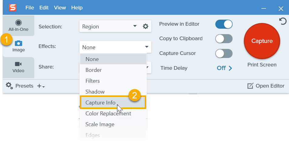 Select Capture Info option in Effects dropdown